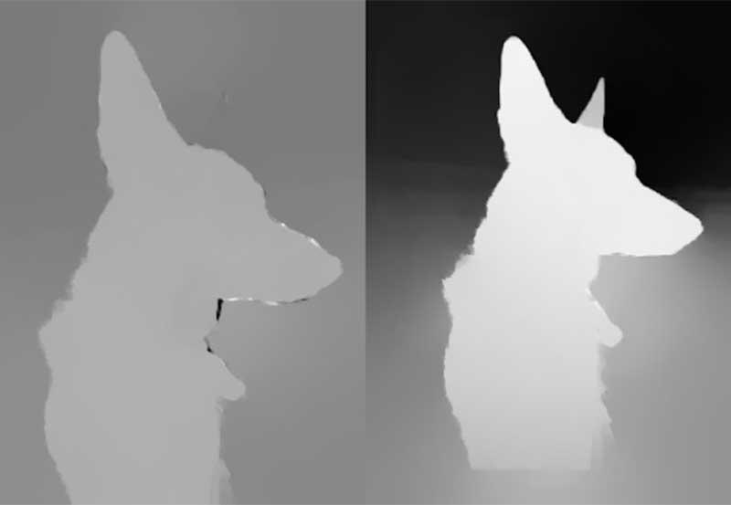 Puppy-Depth-data-map