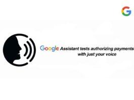 google voice payment